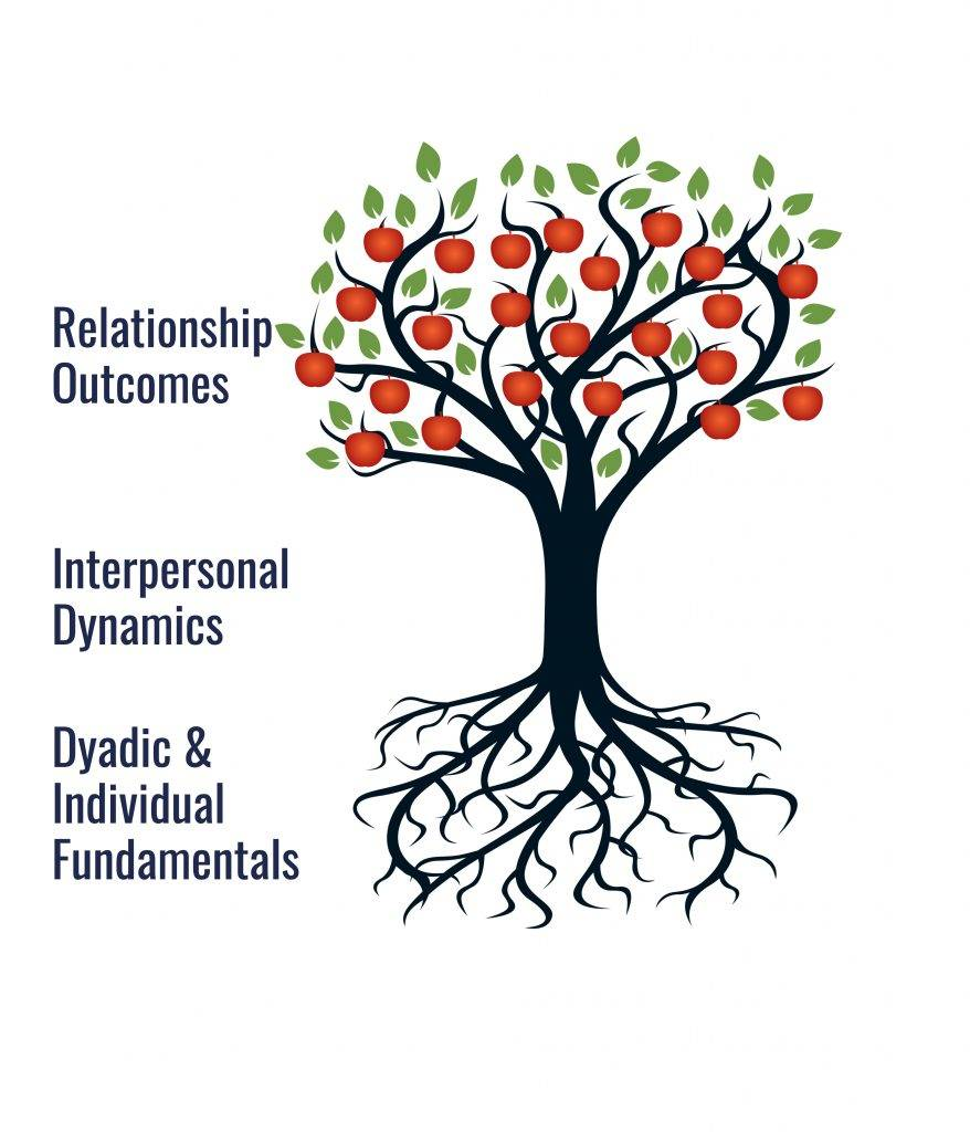 Relationship Panoramic Schematic Model